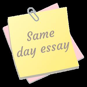 same day essay
